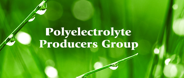 Polyelectrolyte Producers Group